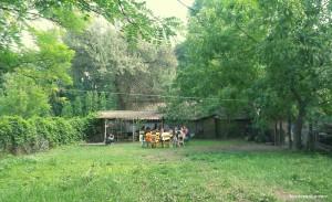 Csepp A Tengerben Alapítvány - Napközis Tábor Pilisen