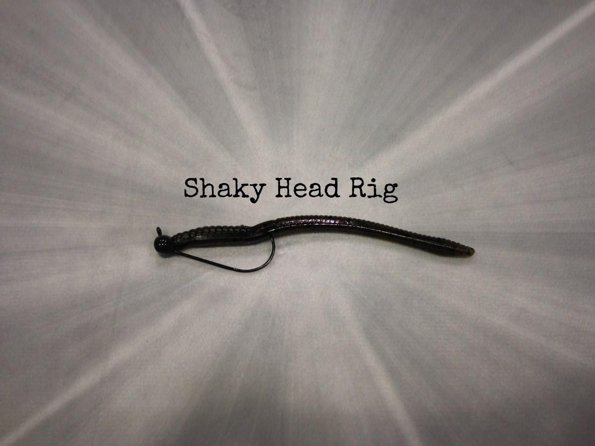 Shaky Head Rig