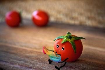 tomato-1460143_1920
