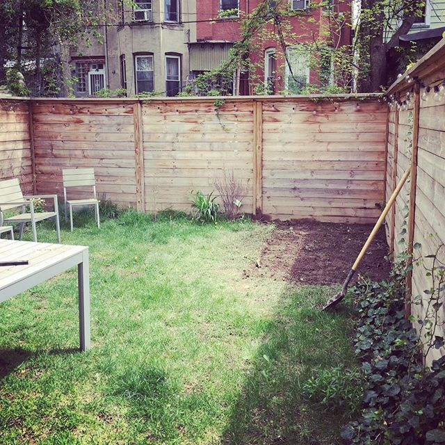 The cottage is getting a shed #flatbushcottage #gardenwork