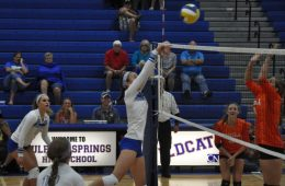 Lady Cats Win Home Opener