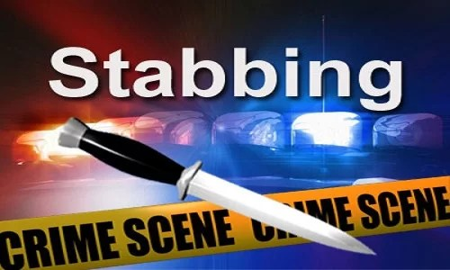 Colorado woman stabbed by her knife-loving dog