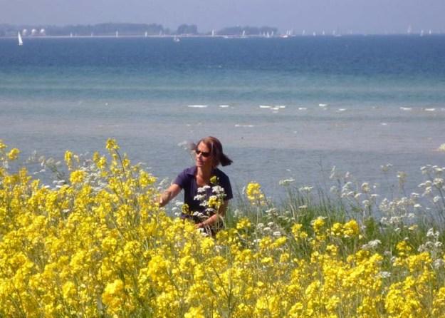 Die gelbe Rapsblüte vor blauer Ostsee gibt besonders schöne Bilder