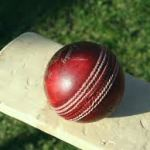 Cricket