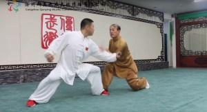 Maître Liu Lian Jun (Ba Ji Quan)