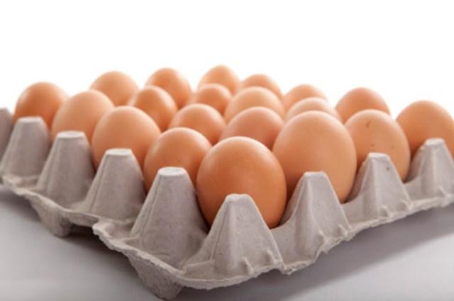 kuroiler eggs