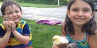 Kids and Chicks (1)
