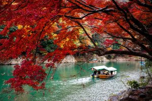 arashiyama_autumn_foliage_japan