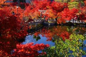 eikando_temple_autumn_colors_kyoto