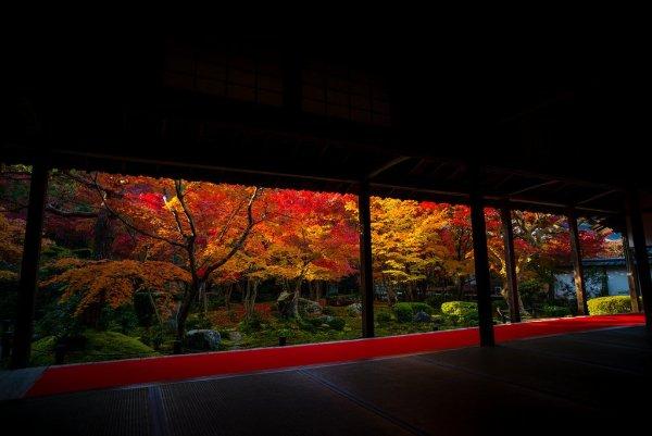 enko-ji_temple_autumn_leaves_kyoto