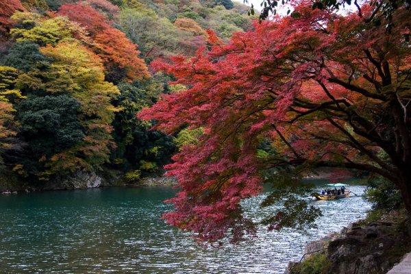 arashiyama_autumn_nature_kyoto
