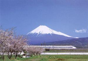 mount_fuji_cherry_blossoms