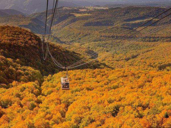 hakkoda_mountains_ropeway_in_autumn
