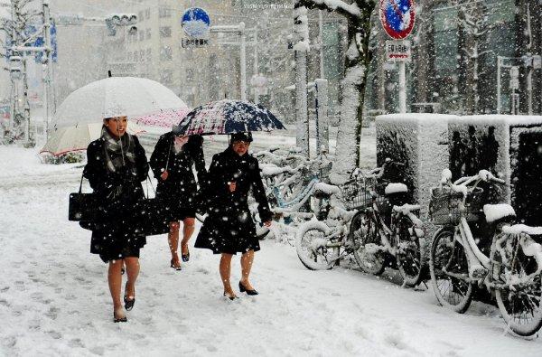 snow_storm_in_japan
