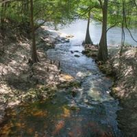 Winners of Lime Run Spring Photography Contest at Live Oak Womans Club 2016-05-23