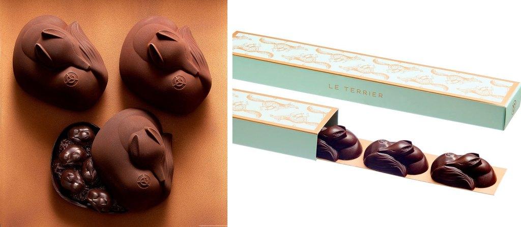 chocolats-renard-yann-couvreur-le-terrier