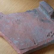 Une empreinte de chat sur une tuile de la Rome antique