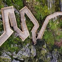 Un chemin de bois dans la nature au Portugal