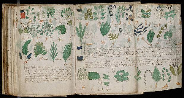 Misterioso códice Voynich