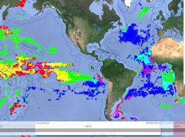 Global Fishing Watch, una web para seguir online la actividad pesquera mundial