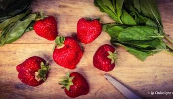 bandeau-fraise