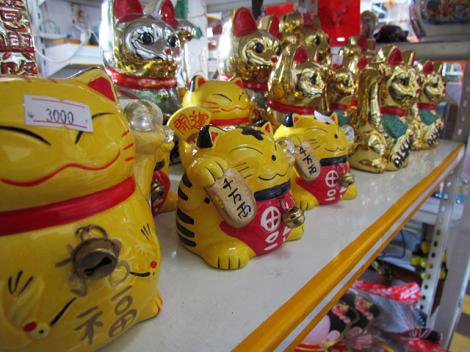 Gatos chinos de La Soledad
