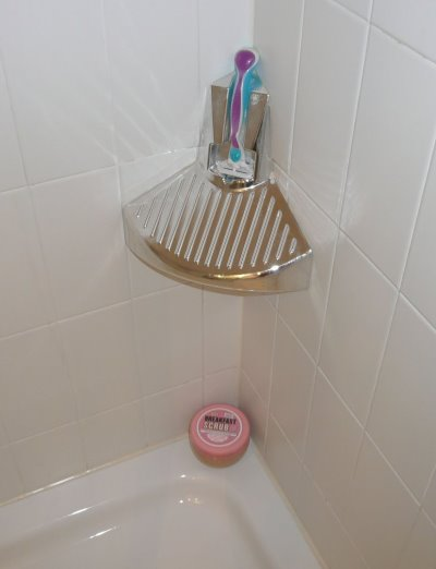 ElevEase Shower Step (2)