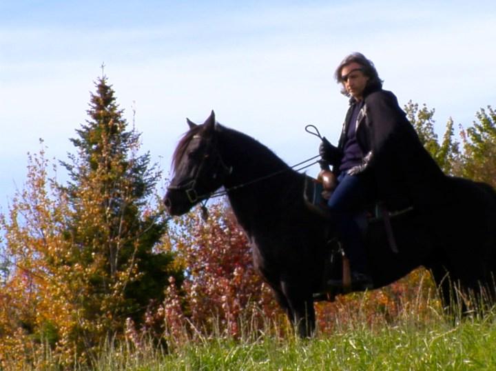 ladlp_my_cheval