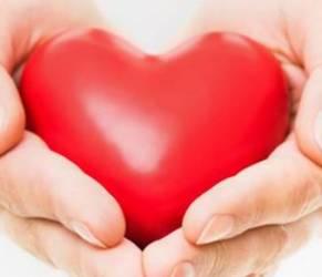 Colesterolo alto e malattie cardiovascolari: cause e rimedi