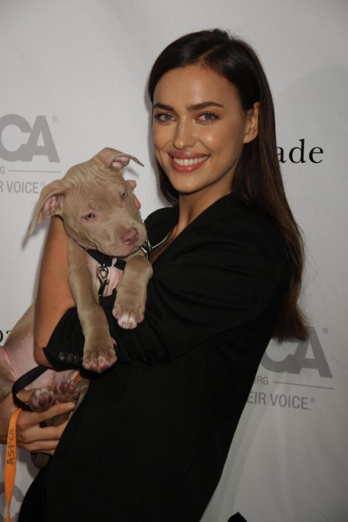 Irina Shayk versione animalista: posa con il cane FOTO 10