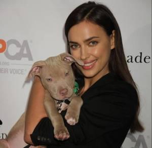 Irina Shayk versione animalista: posa con il cane FOTO 9