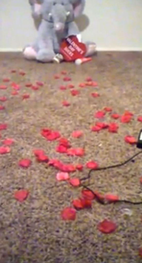 San Valentino, fidanzato la benda