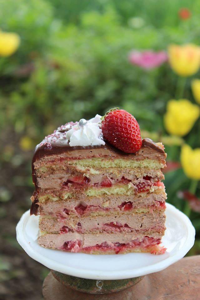 Strawberry Chocolate Naked Cake