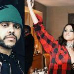 Selena Gomez e The Weeknd |  il gesto che farà infuriare Bieber