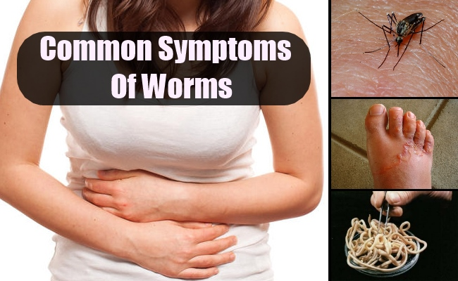 Common Symptoms Of Worms  Lady Care Health. Tilapia Murals. Hotel Food Banners. 4th July Lettering. Principle Signs. Rack Banners. Decorative House Flags. Month Cancer Signs. Friday Night Football Signs