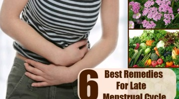 Late Menstrual Cycle
