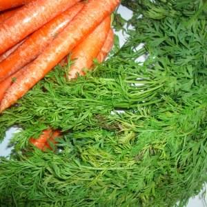 Hojas de Zanahorias, el Boom Culinario