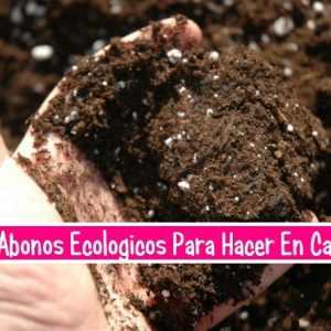 10 Abonos Ecologicos Que podemos Hacer En Casa