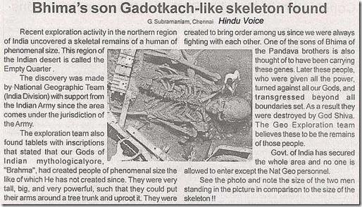 hoax_hindu_voice_article