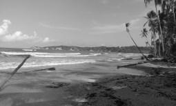 A day in Manzanilla