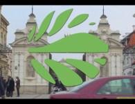 GLF video