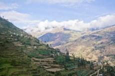 (Español) Latinoamérica: 20 millones de hectáreas de tierras degradadas serán restauradas