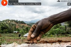 Thrive podcast — Restoring an invisible lifeline: soil