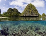 'Conservation_province'_could_generate_sea_change_in_Indonesia___Human_Nature_-_Conservation_International_Blog