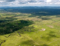 An aerial view showing forest cleared for cattle ranching at S‹o FŽlix do Xingu, a municipality in the Brazilian Amazon that has one of the highest rates of deforestation in the country. ©Haroldo Palo, Jr.