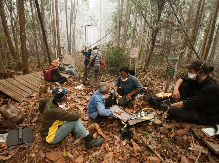 measuring-deforestation