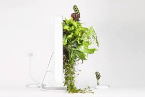 Artista galo resucita modelos clásicos de Apple en arte biológico (FOTOS)