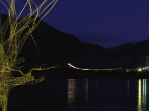 Jane Prophet, The Blot Series: detail, Lac des Arcs, night.