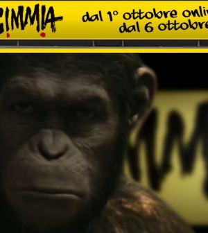 la scimmia-italia 1