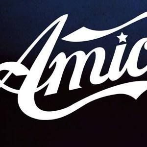 AMICI 13 logo